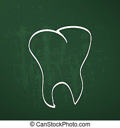 tooth anatomy chalk painted on the chalkboard vector...