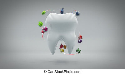 Tooth and bacteria - 3D Animation