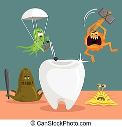 Tooth and germs