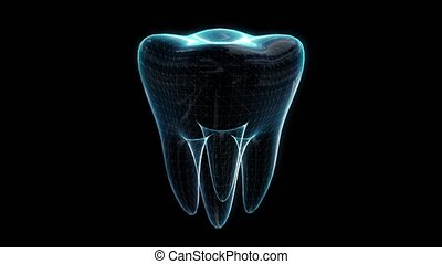 Tooth, animation of rotating. Dental, medicine and health concept. Polygon mesh of model. Looping motion animated virtual space.