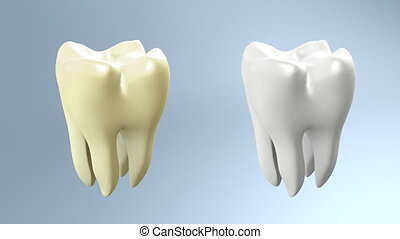 The health of tooth and bad tooth comparison for tooth care concept.