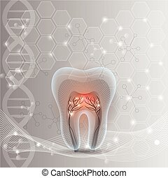 Tooth cross section abstract design