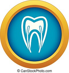 Tooth cross section icon blue vector isolated
