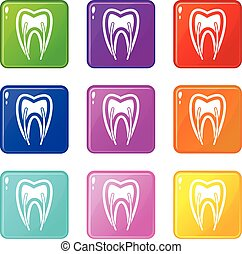 Tooth cross section icons 9 set