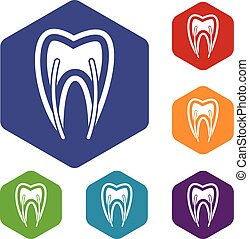 Tooth cross section icons set