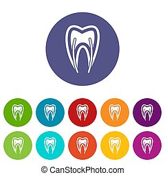 Tooth cross section set icons