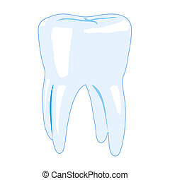 Tooth vector illustration isolated on white background