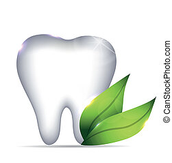 Healthy white tooth illustration and green leafs, dental symbol