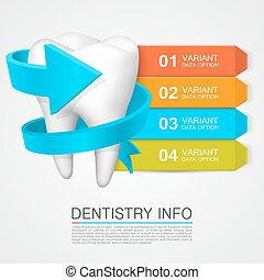 Tooth information with numbering. Dentistry info.