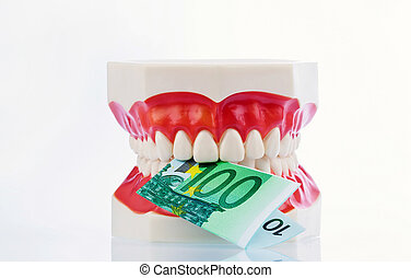 tooth model with euro notes