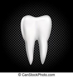 Tooth on dark transparent background