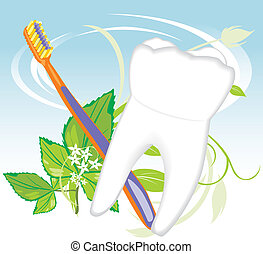 Tooth, toothbrush and mint sprig