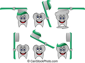 Tooth vector collection