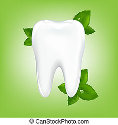 Tooth With Mint - Brilliant White Tooth With Mint, On Green...