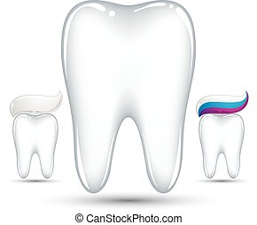 Tooth with toothpaste.