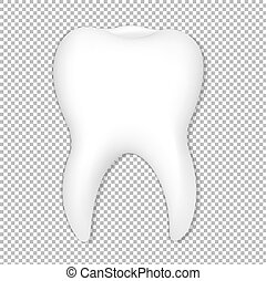 Tooth With Transparent Background