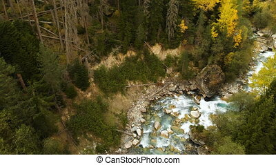 Top aerial view of a fast mountain river flowing in the coniferous autumn forest. Pure mountain water in the natural environment