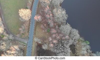 Top Down Country Road Next to Lake, Bare Trees, Aerial Forward. High quality 4k footage