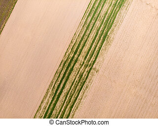 Top down view. Crop agricultural fields. - Aerial top down...