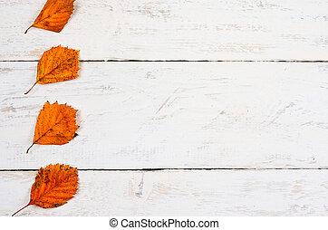 .top, hojas, plano, espacio, vista, otoño, colocar, naranja, composición, vacío, madera, copia, texto, centro, vetical, fondo., fila