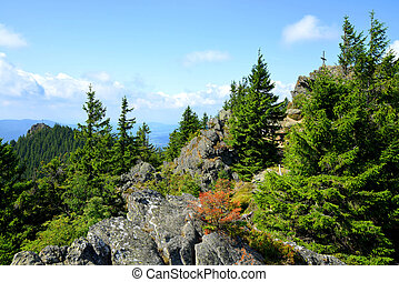 Top of the mountain Grosser Osser in National park Bavarian forest, Germany.