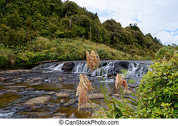 Top of the Wairere Falls, Waikato
