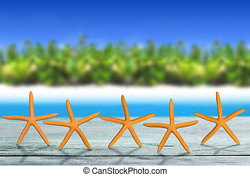 top quality destination - five starfish on wooden table in...