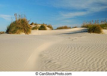 Top the Dunes