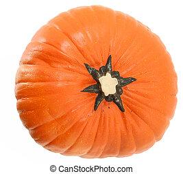 Top View Artificial Pumpkin