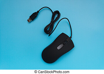 top view black mouse on blue background