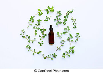Top view. Bottle of essential oil with oregano on white background.