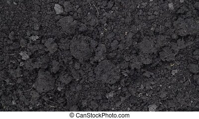 Camera slide over clean dark soil, ground at the beginning of spring close-up footage, top view.