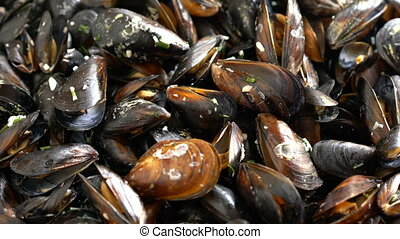 Top view cooked sea mussels rotating background - Sea...
