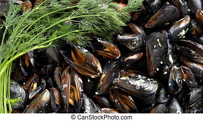 Top view cooked sea mussels rotating background - Top view...