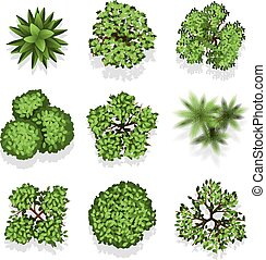 Top view different plants and trees vector set for architectural or landscape design