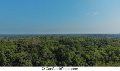 Top view from a height on the stream and thickets of green...
