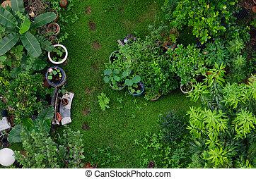Top view garden