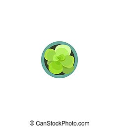 Top view. Green plants easy copy paste in your landscape design projects or architecture plan. Isolated flower on white background. Vector
