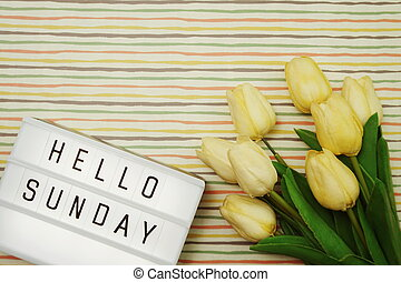 Top view Happy Tuesday Text in Light box flat lay with tulip flower bouquet