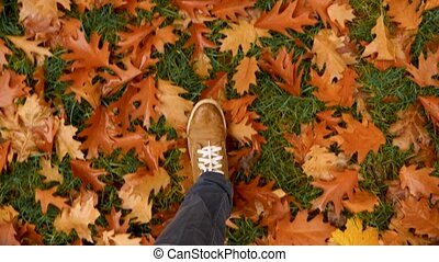 Top View Walking in the Autumn Park, Forest. Man's Legs in Shoes Stepping on Fallen Yellow Maple Leafs. Male Feet Walk on the Ground Covered with Fallen Orange Leaves. Step to Step. Autumn background