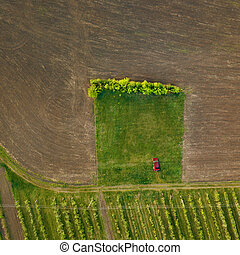 Top view of a car on a dirt road in a treated field - The ...