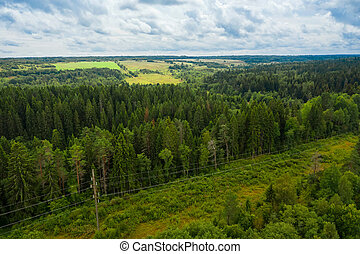 Top view of a forest and hilltop