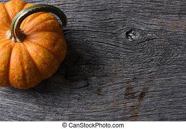 Pumpkin Still Life on Rustic Wood Table