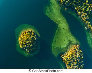 Top view of a small green island in the blue lake