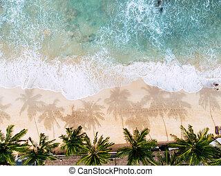 Top view of a woman sunbathing lying down on the tropical beach long shot