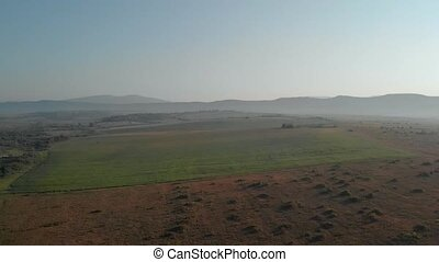 Top view of agricultural fields on a sunny day.