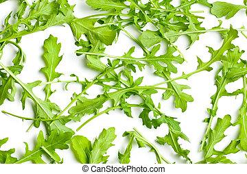 top view of arugula leaves