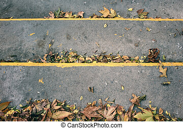 Top view of autumn leaves on concrete stairs.