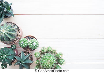 Top view of cactus in pots on wooden table with copy space, Hobby and Lifestyle concept