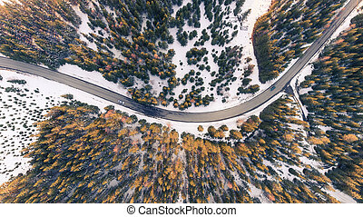 Top view of cars on a curvy road
